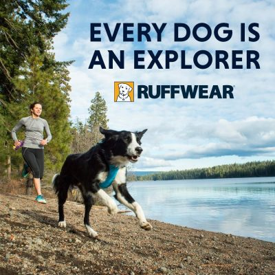 Harnais pour chien Ruffwear