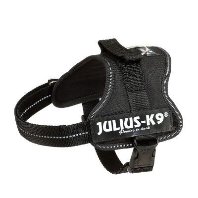 Avis test Julius-K9, 162P-M 1